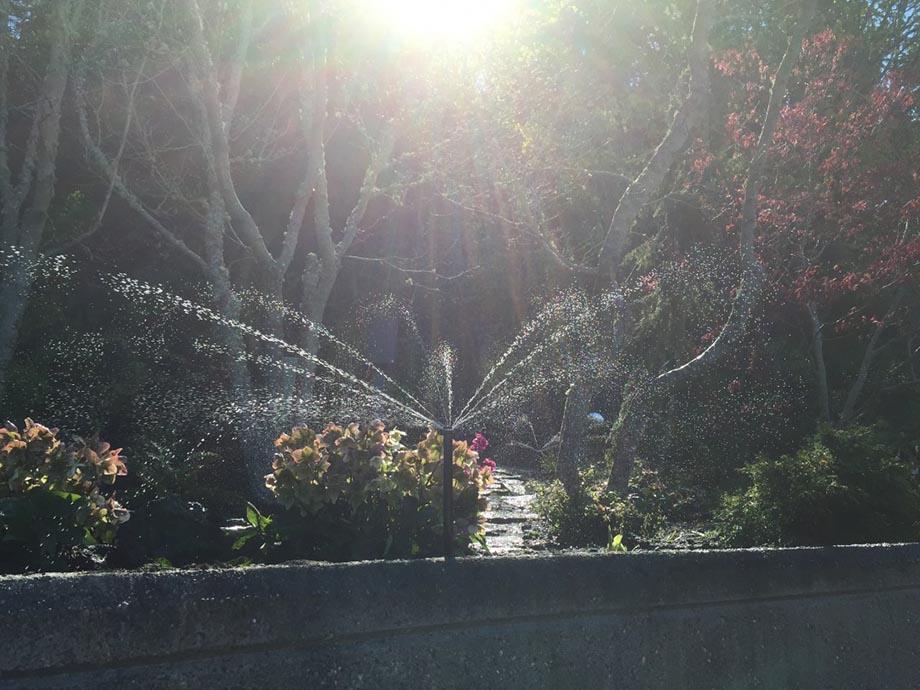 Irrigation Maintenance and Installation